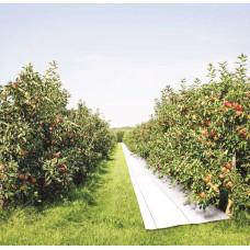 Ткань для окрашивания яблок белая 100 г/м2